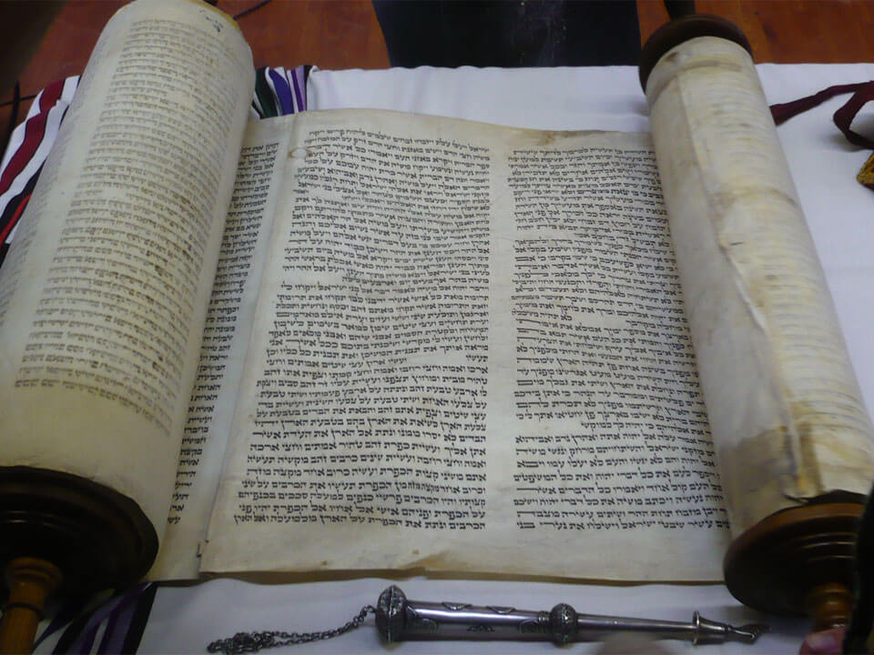 torah portion