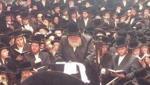 Vznitzer Rebbe in Hebron