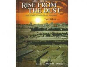 Rise from the Dust a book by Tzvi Glatt