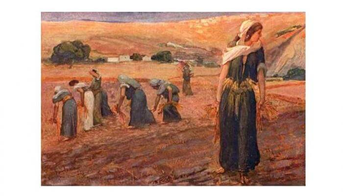 (IMAGE: 'Ruth Gleaning' by the famous French painter James Tissot, 1896. Tissot visited Jerusalem for inspiration.)